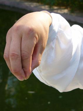 太极拳五指的秘密 - 双丰收 - 双丰收博客小屋