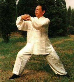 冯志强谈如何练好太极拳 - 双丰收 - 双丰收博客小屋