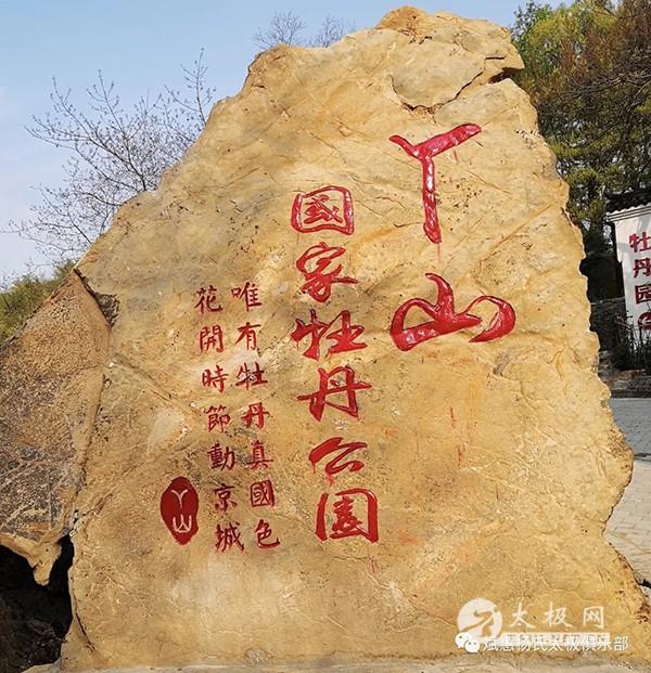 2018年安徽芜湖丫山牡丹节开幕_大宋太极拳太极之花惊艳表演