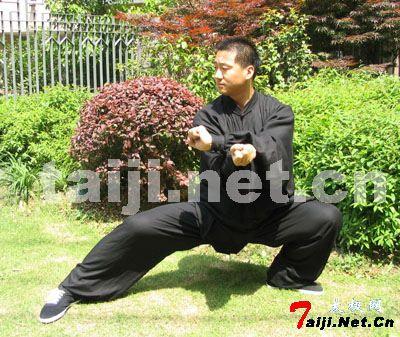 【转载】太极拳练习中的三个为什么? - 双丰收 - 双丰收的博客小屋