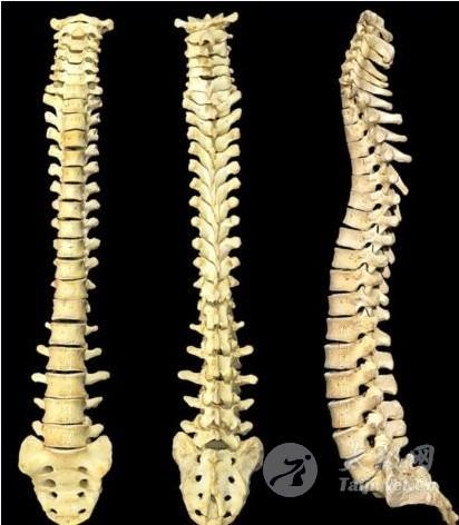 练指法比扭脊椎重要 - 双丰收 - 双丰收博客小屋