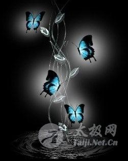 太极拳劲力运行蝴蝶效应及拳势中的水性 - 双丰收 - 双丰收博客小屋